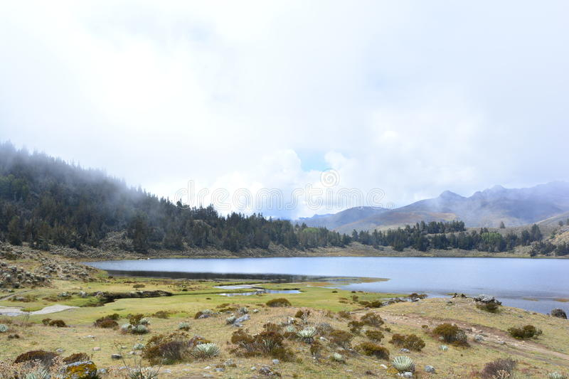Laguna DE Mucubaji meer in Merida, Venezuela royalty-vrije stock fotografie