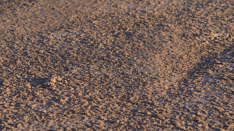 Laguna de Tacarigua de la arena fotografía de archivo libre de regalías