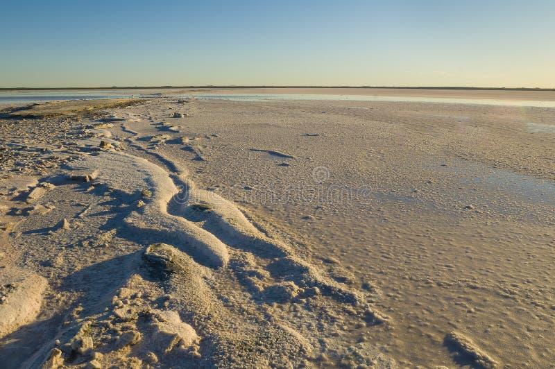 Laguna del sale, La Pampa, immagine stock