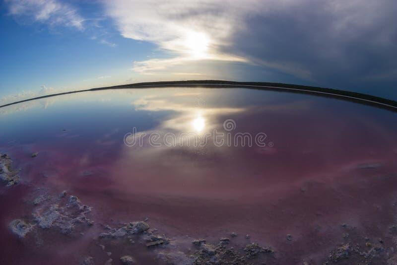 Laguna del sale, La Pampa, fotografia stock