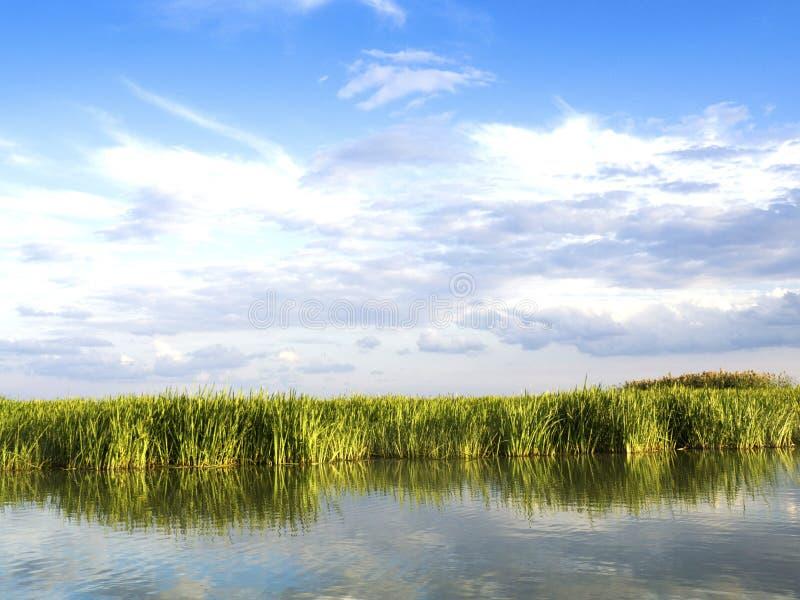 Laguna di delta di Danubio fotografie stock