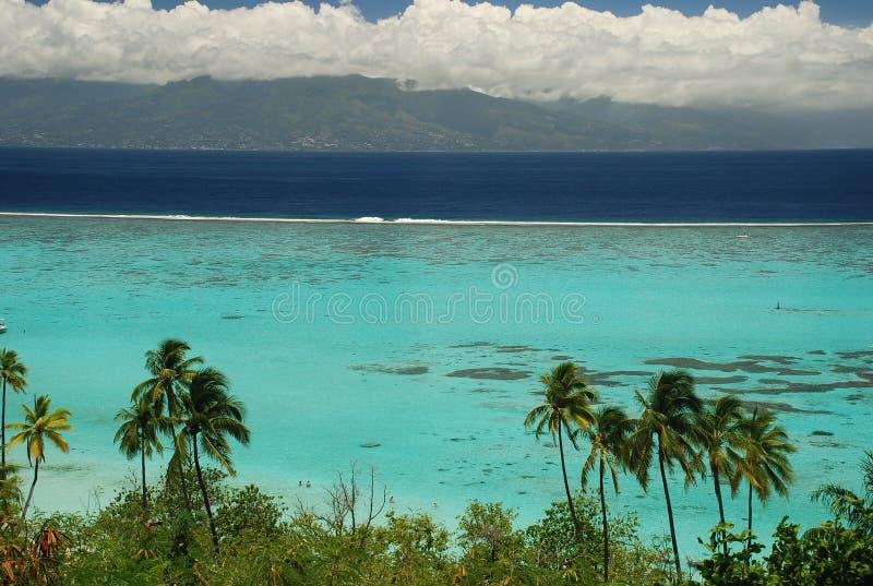 Laguna di Moorea ed isola della Tahiti. Polinesia francese fotografia stock libera da diritti