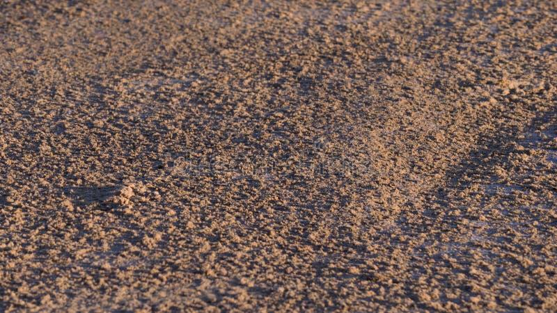 Laguna di Tacarigua della sabbia fotografia stock libera da diritti