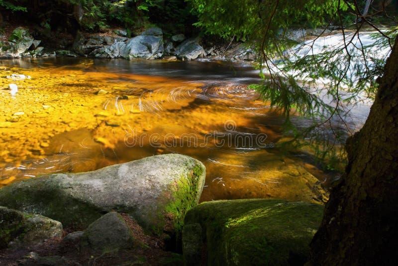 Laguna dorata sul fiume della montagna La repubblica Ceca, fiume Mumlava fotografia stock
