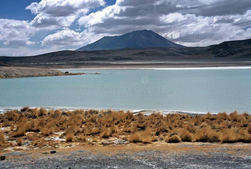 Laguna en Altiplano en Bolivia, Bolivia imágenes de archivo libres de regalías