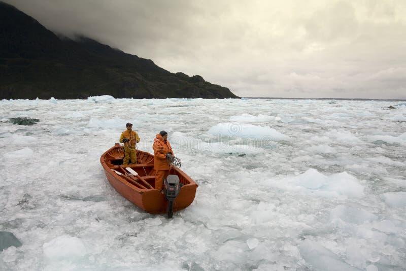 Laguna glaciale di San Rafael - Patagonia - il Cile fotografia stock libera da diritti