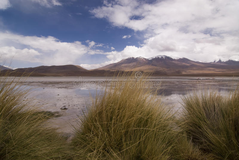 Laguna Hedionda en Bolivie photographie stock
