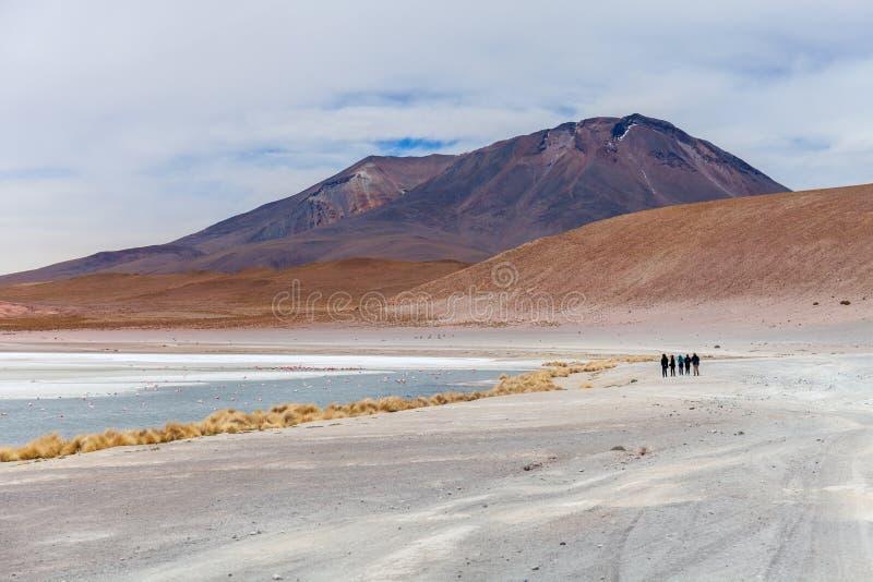 Laguna Hedionda situado en el altiplano boliviano cerca del plano de la sal de Uyuni en Bolivia, Suramérica imagen de archivo