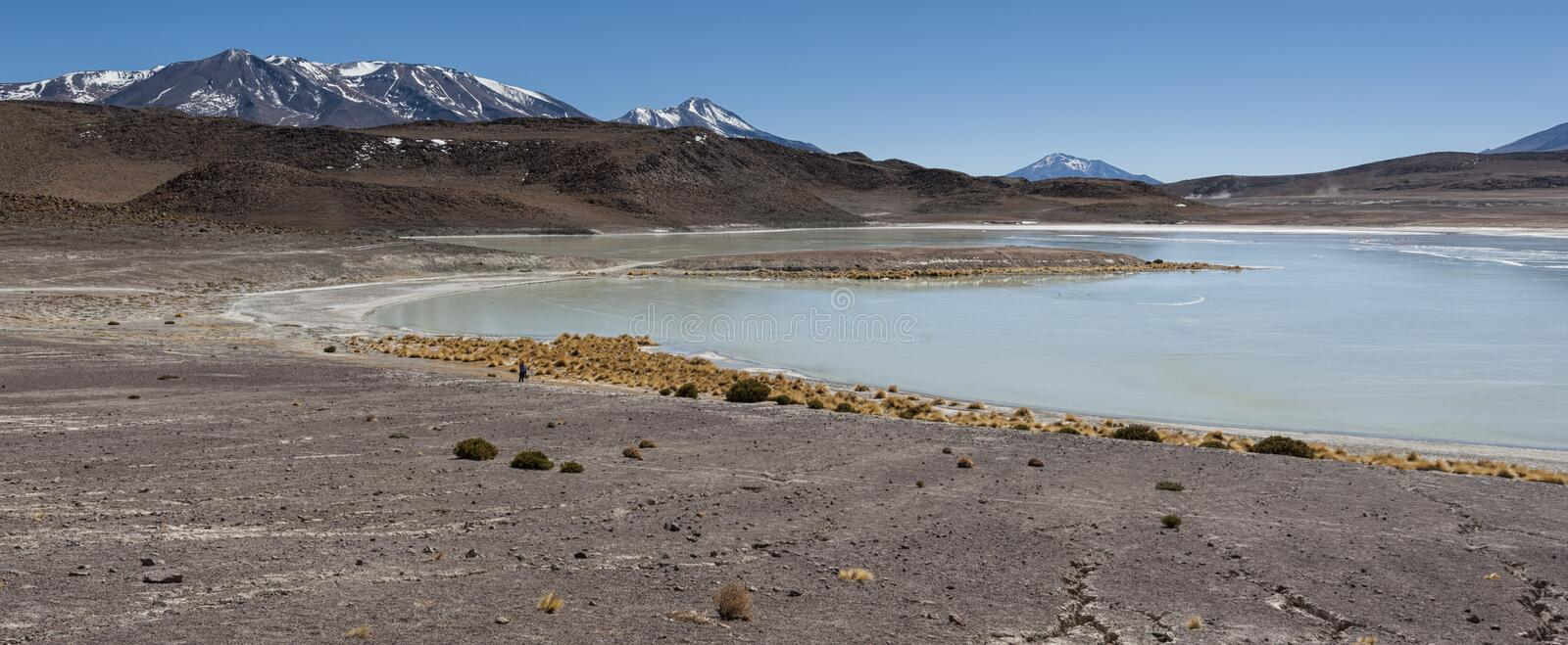 Download Laguna Honda In English Deep Lagoon Sud Lipez Altiplano Reserva Eduardo Avaroa
