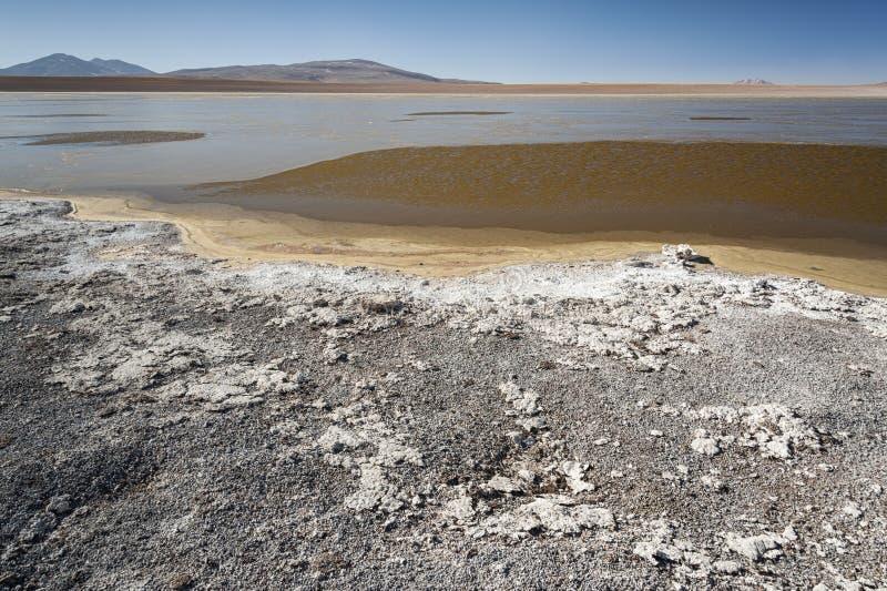 Laguna Kollpa Kkota Collpa Laguna, Sud Lípez Province, Potosí Department. Bolivia royalty free stock photography