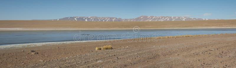 Laguna Kollpa Kkota Collpa Laguna, Sud Lípez Province, Potosí Department. Bolivia stock photo