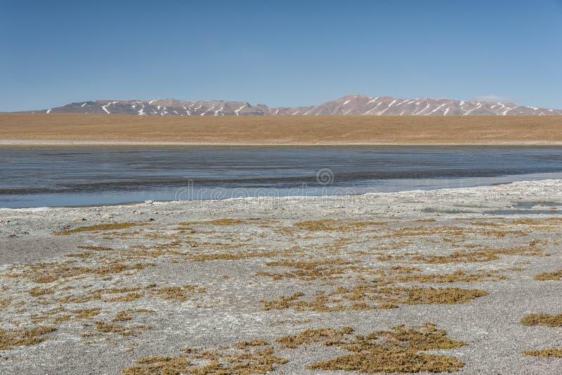 Laguna Kollpa Kkota Collpa Laguna, Sud Lípez Province, Potosí Department. Bolivia stock photography