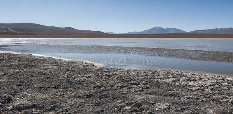 Laguna Kollpa Kkota Collpa Laguna, Sud Lípez Province, Potosí Department. Bolivia royalty free stock images