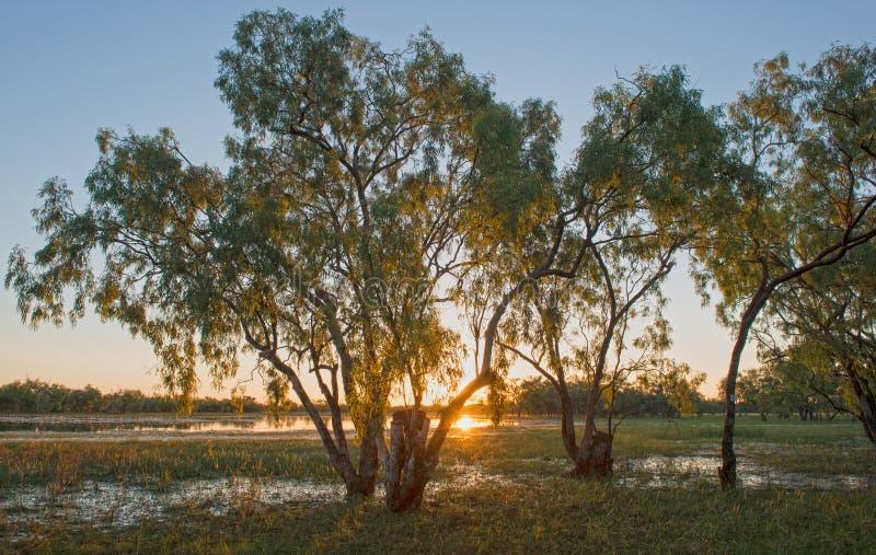 Laguna Leichhardt en el norte de Queensland foto de archivo