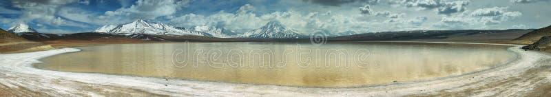 Laguna lejia (bleekmiddelmeer) in Atacama-gebied royalty-vrije stock foto's