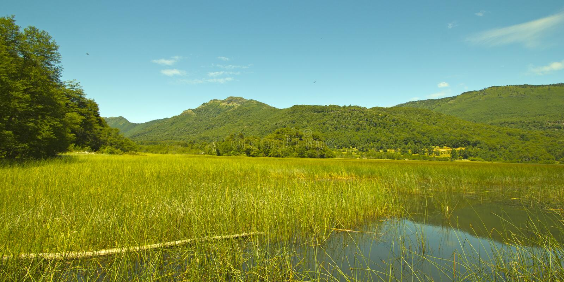 Laguna Malleco in het Nationale Park van Tolhuaca chili stock afbeelding