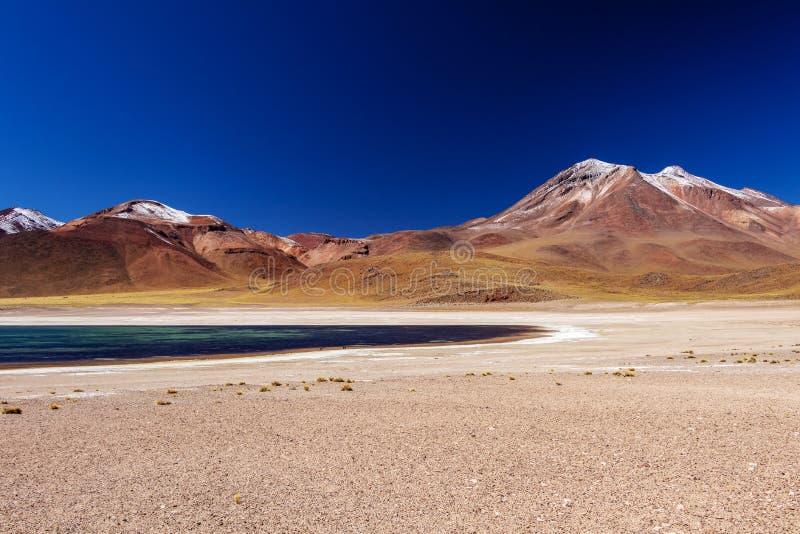 Laguna Miscanti arriba en las montañas de los Andes en el desierto de Atacama, Chile septentrional, Suramérica fotografía de archivo libre de regalías