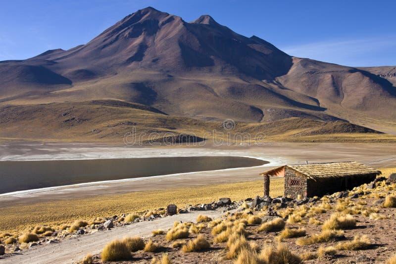 Laguna Miscanti i de höga Anderna bergen i Atacamaen Deser royaltyfri bild