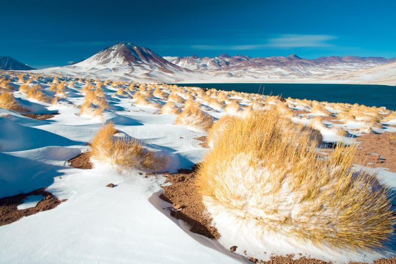 Laguna Miscanti Miscanti Lagune en Cerro Miscanti Miscanti heuvel in Altiplano stock afbeelding
