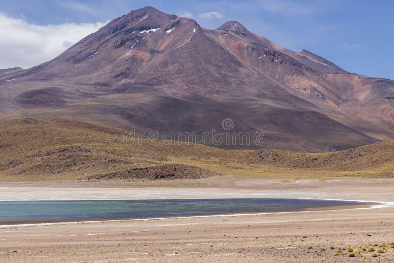 Laguna Miscanti near Atacama desert. stock images