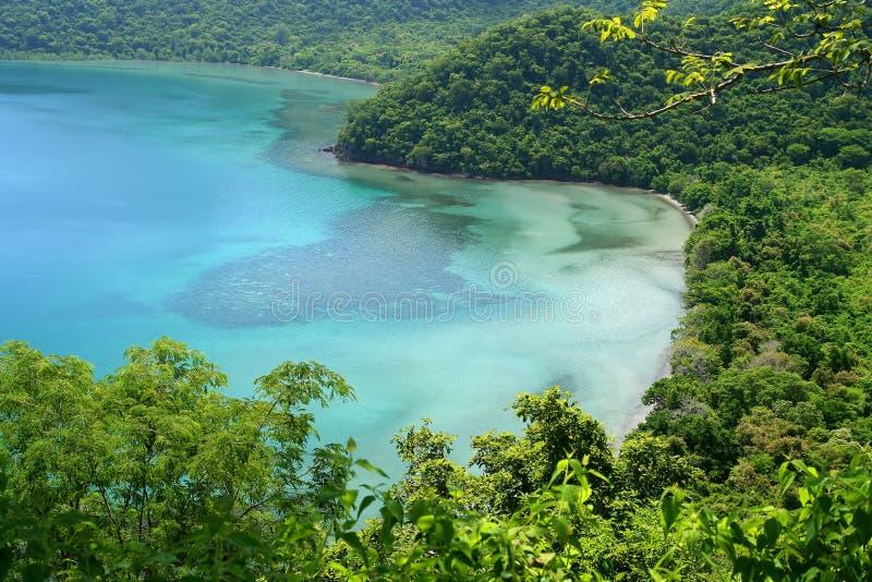 Laguna nella giungla immagini stock