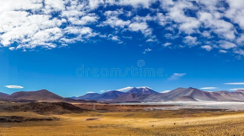 Laguna Salar de Talar di Altiplano nel Cile da San Pedro de Atacama fotografia stock libera da diritti