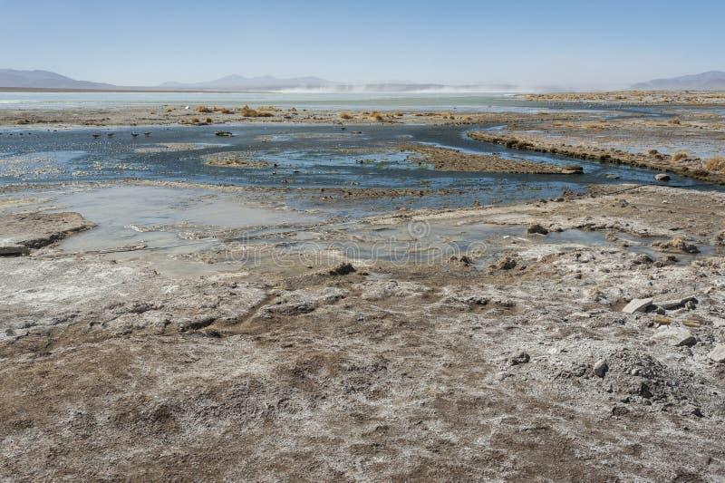 Laguna y Termas de Polques hot spring pool with Salar de Chalviri in background, Salar de Uyuni, Potosi, Bolivia. South America stock photography