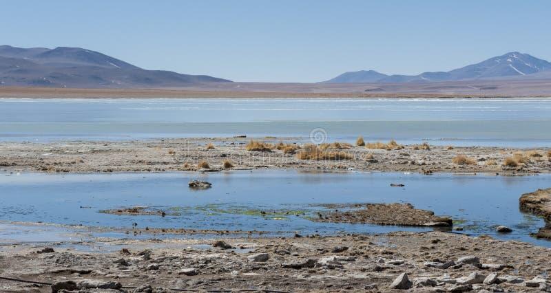 Laguna y Termas de Polques hot spring pool with Salar de Chalviri in background, Salar de Uyuni, Potosi, Bolivia. South America royalty free stock photos