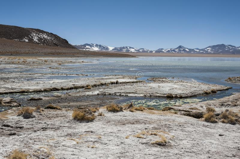 Laguna y Termas de Polques hot spring pool with Salar de Chalviri in background, Salar de Uyuni, Potosi, Bolivia stock image