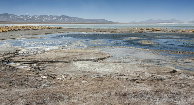 Laguna y Termas de Polques hot spring pool with Salar de Chalviri in background, Salar de Uyuni, Potosi, Bolivia. South America royalty free stock images
