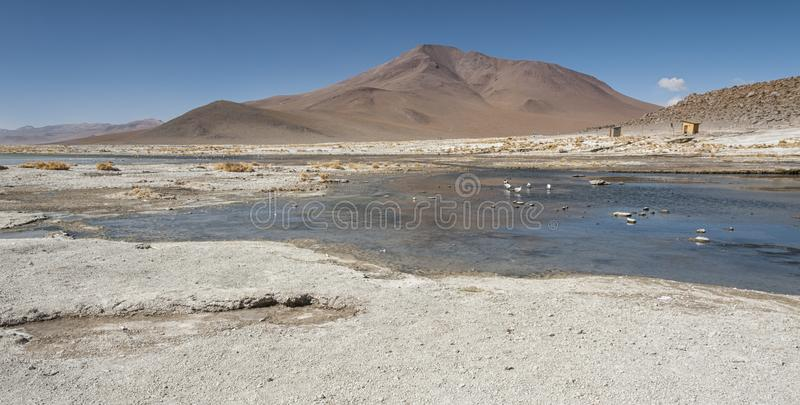 Laguna y Termas de Polques hot spring pool with Salar de Chalviri in background, Salar de Uyuni, Potosi, Bolivia. South America stock photo