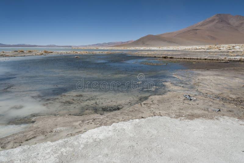 Laguna y Termas de Polques hot spring pool with Salar de Chalviri in background, Salar de Uyuni, Potosi, Bolivia. South America stock image
