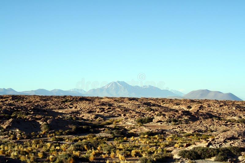 Lagunas Altiplanicas, Atacama, Chile obraz royalty free