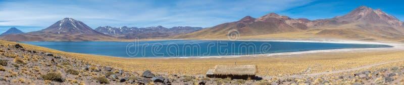 Lagunas Altiplanicas, panoramautsikt, Miscanti y Miniques arkivfoto
