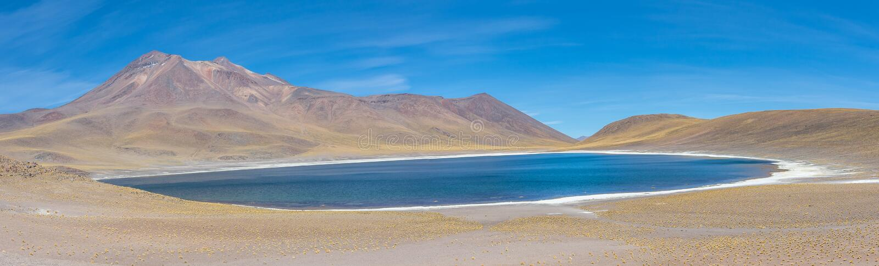 Lagunas Altiplanicas, panoramautsikt, Miscanti y Miniques fotografering för bildbyråer