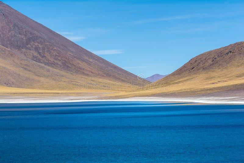 Lagunas Altiplanicas, panoramautsikt, Miscanti y Miniques royaltyfria foton