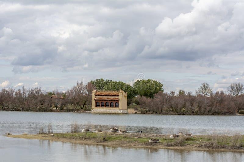 Lagunas de Villafáfila. In the province of Zamora Spain royalty free stock image