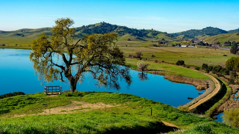 Lagundalen parkerar sjööverblick från kullen fotografering för bildbyråer