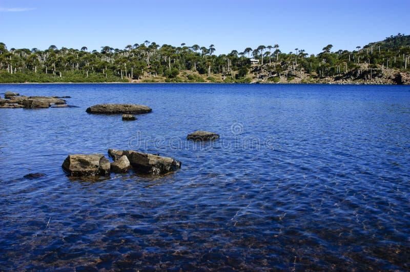 Download Lagune stock afbeelding. Afbeelding bestaande uit landschap - 29504109
