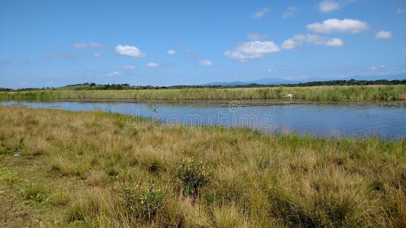 lagune stock foto's