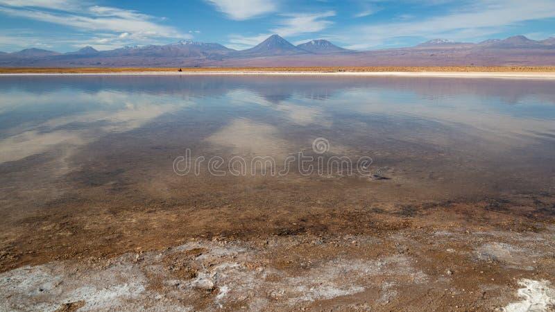 Lagune in Atacama mit Ansicht zum Vulkan lizenzfreie stockfotos