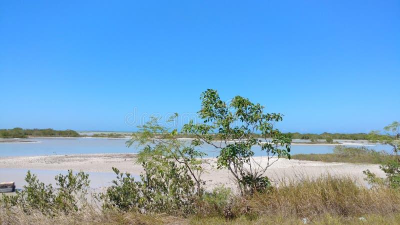 Lagune avant l'arrivée en EL Cuyo, Mexique image libre de droits