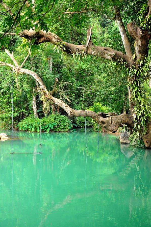 Lagune bleue dans Vang Vieng, Laos photos stock