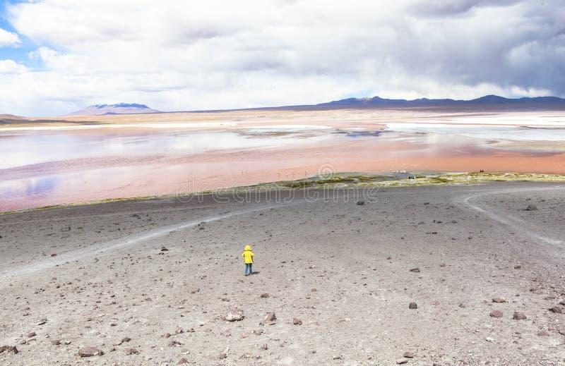 Lagune in Bolivië royalty-vrije stock foto
