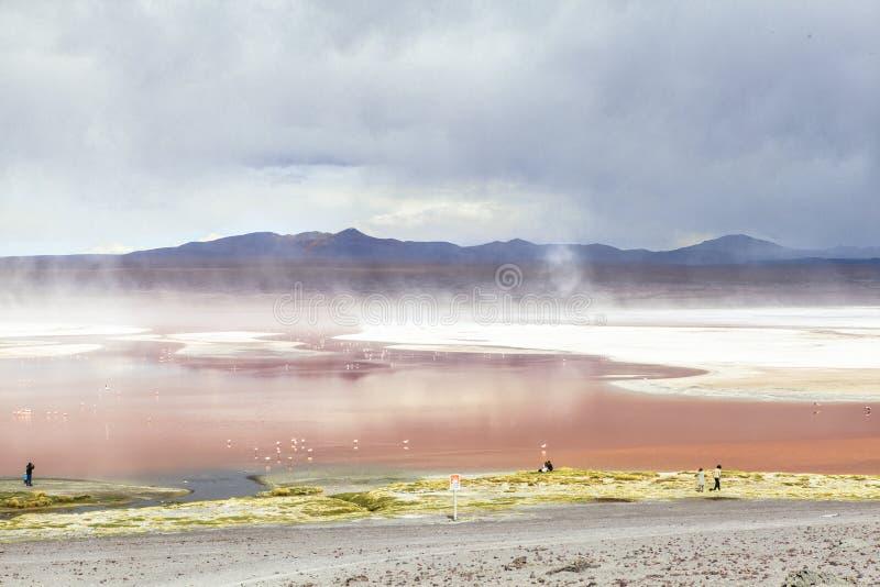 Lagune in Bolivië royalty-vrije stock afbeelding
