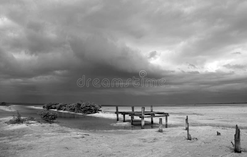 Lagune détériorante abandonnée de Chachmuchuk de dock de bateau en Isla Blanca Cancun Mexico en noir et blanc photographie stock libre de droits
