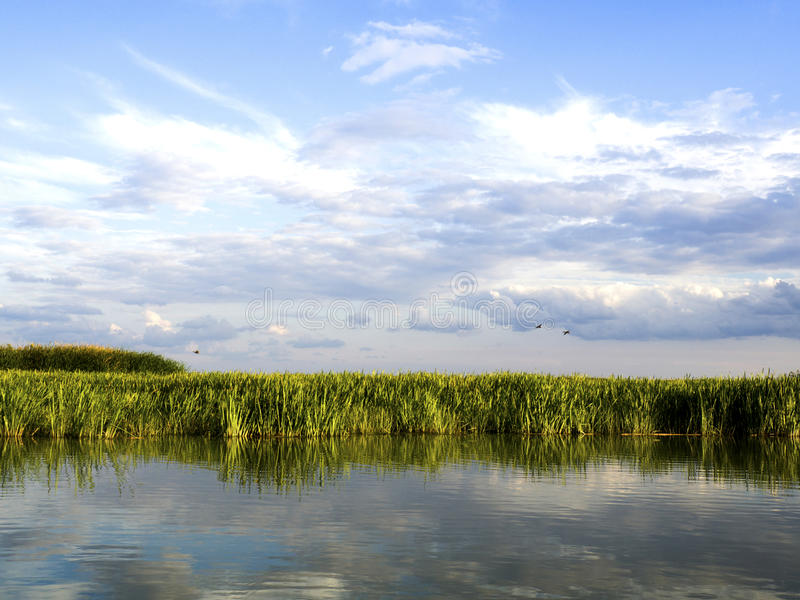 Lagune de delta de Danube images libres de droits