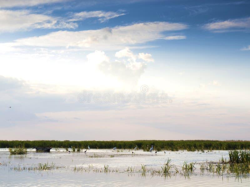 Lagune de delta de Danube photo stock