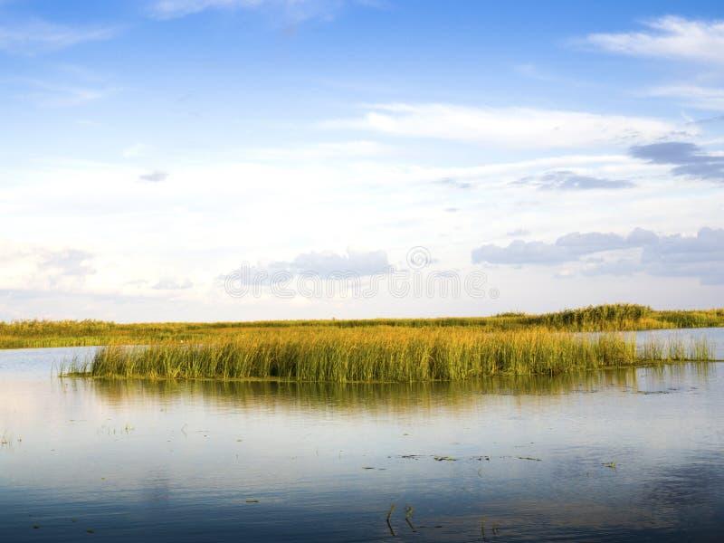 Lagune de delta de Danube image libre de droits
