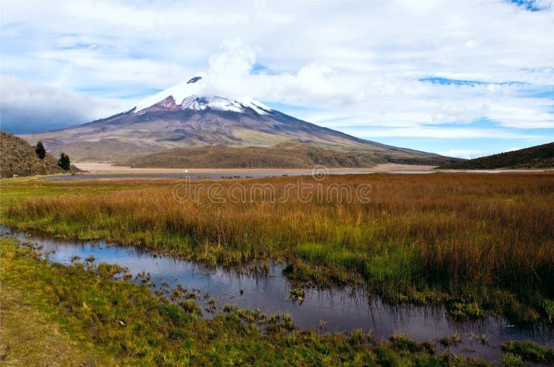 Lagune de Limpiopungo au pied du volcan le Cotopaxi photographie stock